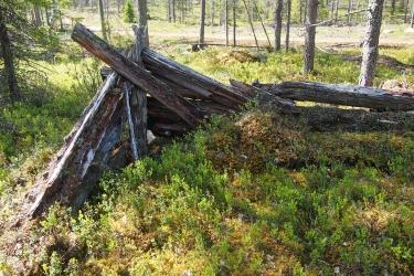Lahonneita puita päällekkäin.