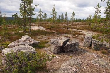 Suuria tasapintaisia kiviä vähäpuisessa maastossa.