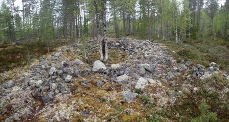 Osittain sammaloituneita kiviä kehässä, jonka keskeltä kasvaa pari koivua.