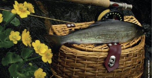 Facebook: Kalastonhoitomaksujen kysyntä jatkuu korkeana