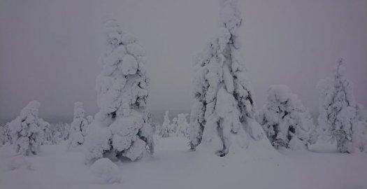 Facebook: Photos from Metsähallitus erävalvonta's post