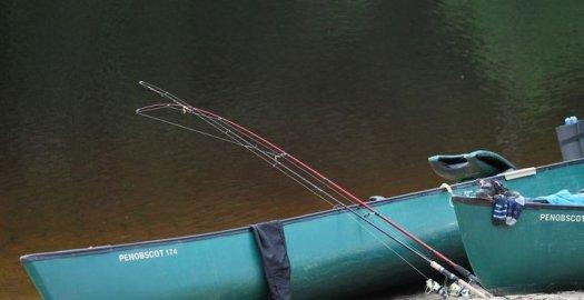 Facebook: Oulankajoella (lupa-alue 5572) on vesi jäähtynyt viikonlopun aikana sen verran, että...