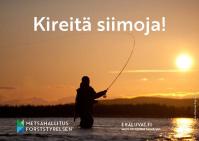 Bild av kortet, man som fiskar med en virvel. Tekx: Kireitä siimoja, på finska.