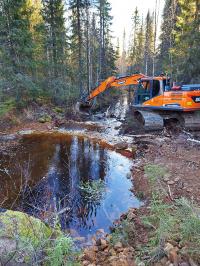 Kaivinkone kaivamassa puroa. Kuva: Sihveri Ervasti