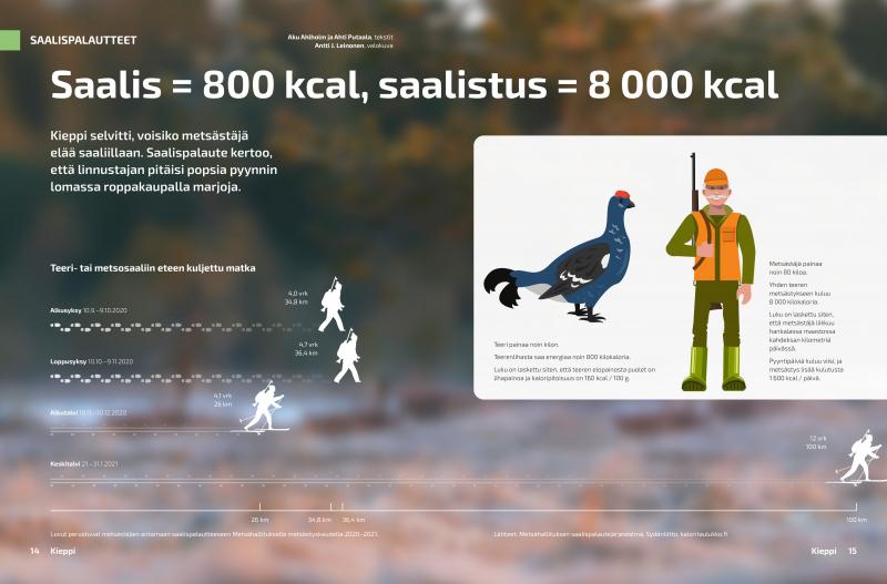 Grafiikassa näytetään, että metsästäjä hiihtää alkutalvella 26 kilometriä saadakseen saaliiksi linnun. Keskitalvella matka onjopa 100 kilometriä.